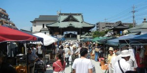 kawagoe shrine sale by kelly cash
