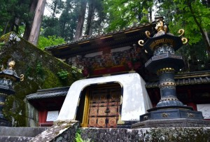 nikko by brooke