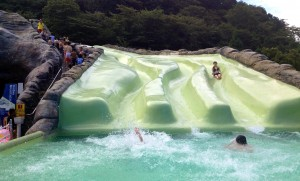Water Slides by Linda Bell Hakone